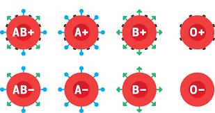 Resultado de imagen para grupos sanguineos