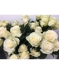 white roses in purcellville va
