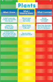 Scholastic Teachers Friend 3 Column Chart Pocket Chart Multiple Colors Tf5114