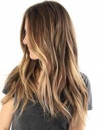 Brown Hair With Light Brown Tips