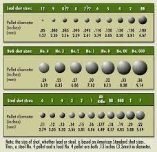 Caliber Diameter Chart 20 Gauge Shot Size Chart 5 7 X28mm