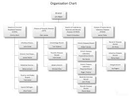Best Photos Of Organizational Chart Examples Manufacturing