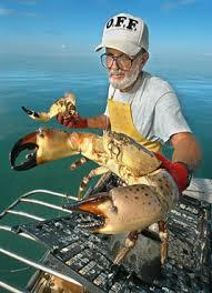 Florida Fishing Florida Stone Crab Season Opens