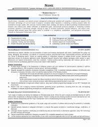 Process Analyst Sample Resume Process Analyst Sample Resume Beautiful Professional Resume Samples 4