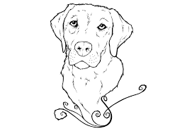 Small Picture Labrador Coloring Pages Throughout itgodme