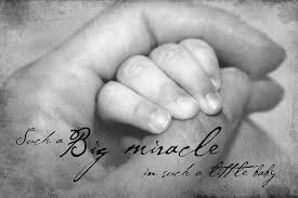 Miracle Baby Quotes Best Baby Hand In Hand Photograph By Tania L