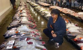 Food Safety Specialist Jennifer Young Is International Seafood Safety Specialist