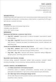 Resume Objective Examples Finance Internship For Basic Career Goals ...