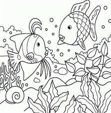 rainbow fish color page