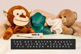 The Get Better Basket The Ultimate Cold And Flu Season Resource