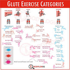 Best Glue Exercise Graphic Ever From Bodylogiq And Bret