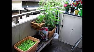Balcony Garden Creative Small Balcony Garden Ideas Youtube