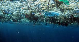 Small Picture Tiny plastic big problem Science News for Students