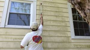 aluminum siding house cleaning before painting salisbury md
