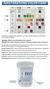12 Panel Drug Test Cup With Bup And Adulterations Identify Diagnostics Clia Waived