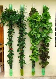 Vertical Garden Design Ideas Interesting Researching DIY Vertical Garden Ideas That Actually Look Good