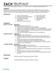 Salon Resume Example Resume