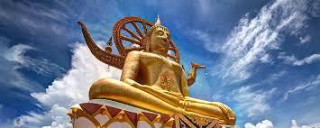 Zitate Und Sprüche Von Buddha Myzitate