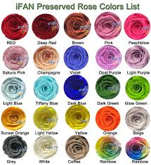 Preserved Flower Real Multi Color Rose 100 Fresh Natural Long Life Real Preserved Rose In Glass Dome Buy Preserved Rose In Glass Dome Preserved
