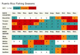 Puerto Rico Sport Fishing Fishing Seasons