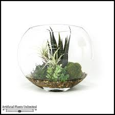 large glass bowl for plants designs