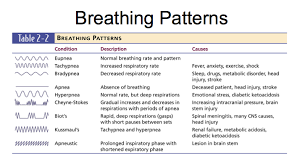 Types Of Breathing Patterns Case Study Breathing Patterns Essay About Money