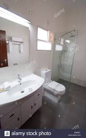 ultra modern bathroom suite toilet sink and shower in luxury ultra modern bathroom suite toilet sink and shower in luxury indian hotel