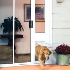 glass dog doors sliding glass door insert with doggy door glass pet doors geelong