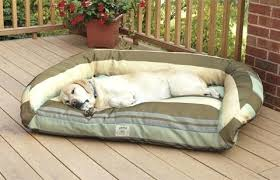 outside dog beds outdoor dog bed heated dog beds petco