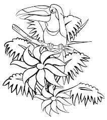 Rainforest Animal Coloring Pages Animal Coloring Pages Rainforest