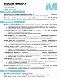 Advertising Consultant Sample Resume Small Business Owner Resume Sample Elegant Small Business Consultant 13