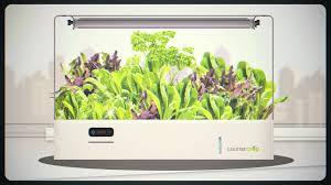 garden kitchen herb garden kit appealing countertop herb garden kit and grow gardening pic of