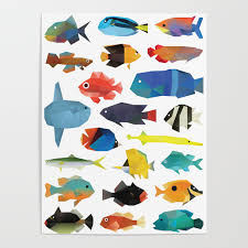 Tropical Fish Chart Poster By Polymolystudio