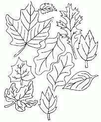 Lotus Flower Coloring Pages | Flower Coloring pages of ...
