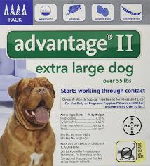 Advantage Ii Dosage Chart For Cats Bayer Topical Flea Treatment For Dogs