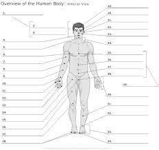 14 best Anatomy & Physiology images on Pinterest | Medicine ...