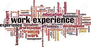 Another Word For Work Experience Work Experience Word Cloud Concept Vector Illustration Royalty Free