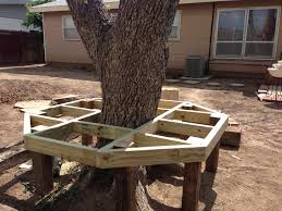 Tree Stump Seats Bench Tree Stumps Amazing Tree Stump Bench Awesome Tree Stump