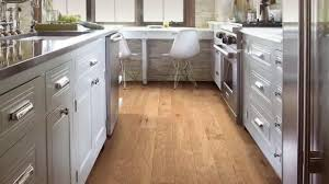 Shaw Flooring TV mercial Floor Now Pay Later iSpot