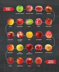 Types Of Apples Chart Definitive Guide For Different Types Of Apples And Their