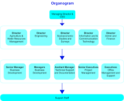 Organization Chart For Engineering Company Organizational Structure Creative Consultants
