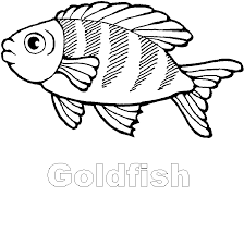 gold fish clip art black and white. Fine Gold Rycuveunu Clip Art Fishing A To Z Kids Stuff Gold Fish And Clip Art Black White S