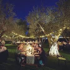 outdoor fairy lighting. Solar Outdoor Fairy Lights 50 Warm White LED Powerbee Endurance ® : Example Lighting