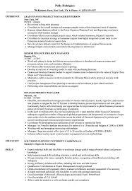 Finance Project Manager Resume Samples Velvet Jobs