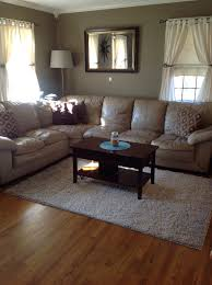 Paint Colors For Walls In Living Room Living Room Decoration New Wall Color Behr Paint Ethiopia
