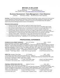 Service Delivery Manager Resume Magnificent Field Marketing Manager Sample Resume Marketing Director Resume