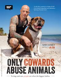 stop animal abuse essay ami james only cowards abuse animals  ami james only cowards abuse animals animal tattoos star of ny ink and tattoo artist ami