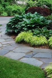Carey Ezell Landscape Design. Bluestone walkway with weeping japanese  maple, hosta and japanese fern