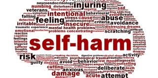 Image result for self-harm