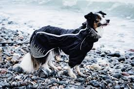 Hurtta Downpour Suit Ruffdog Sport Canada
